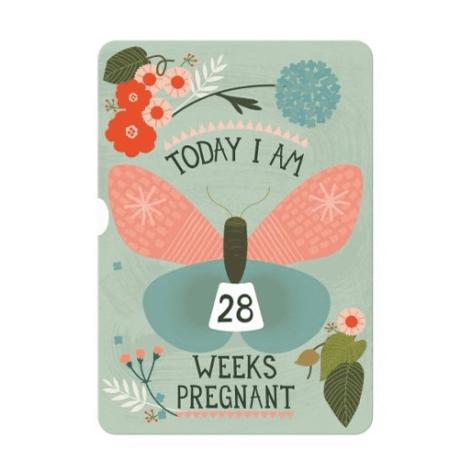 milestone-pregnancy-wheel-card-1